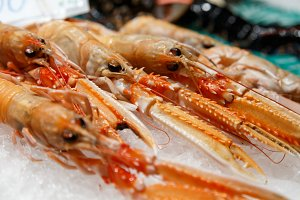fresh nephrops on ice