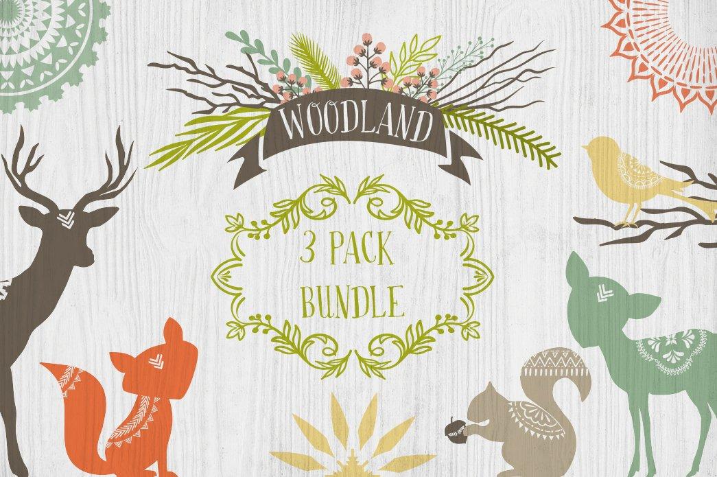 Woodland 3 Pack Bundle Illustrations Creative Market