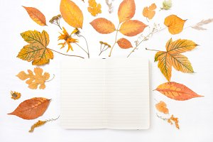 Notepad and yellow leaves