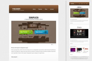 Themer Email Newsletter PSD