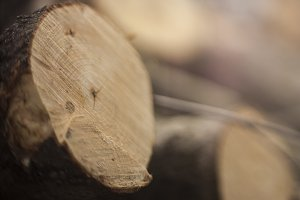 Firewood cut background