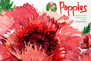 Watercolor Poppies Clipart F-28