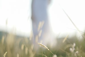 woman bokeh in the field