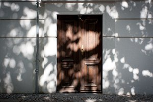 Shaded Door