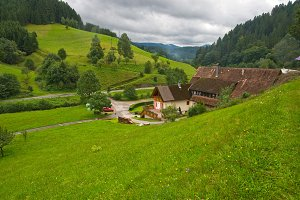 Typical Landscape in Black Forest