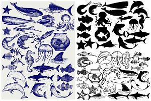 Underwater, sea animals