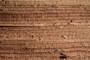 Wood texture part 2 XXXX