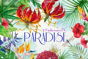 Paradise Watercolor Floral F-45