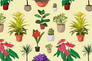Houseplants set pattern