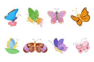 Flat butterfly vector