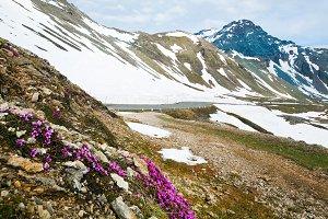 Spring snowy Alps mountain tops