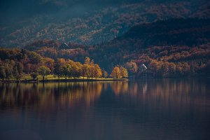 Beautiful autumn at lake Bohinj