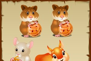 Cute squirrel, hamsters and mouse