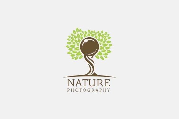 Fashion Photography Logo Templates Creative Market