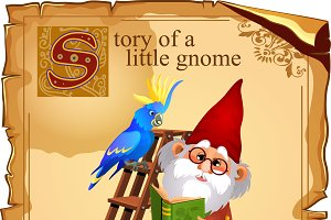 5 image of life magic gnomes