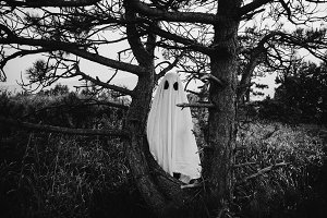 White sheet ghost in forest