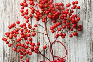 Nandina branches on white wood