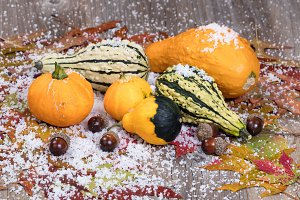Gourds in Autumn and winter