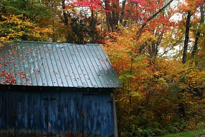 Blue Barn on Autumn Road