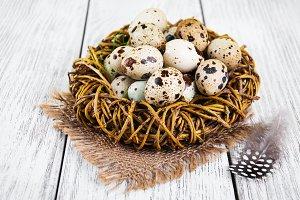 Quaill eggs