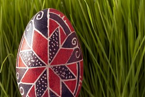 Easter Red Colored Egg