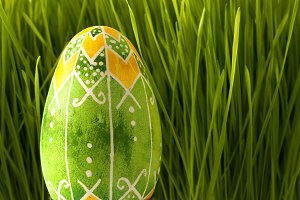 Easter Green Colored Egg
