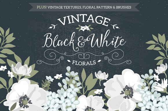 Vintage Black White Florals Illustrations Creative Market