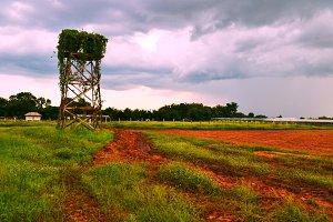 Farm in the rainy season