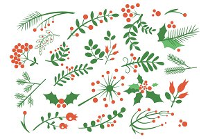 Red Berries, Fir and Leaves