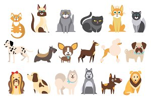 Collection of Cats and Dogs
