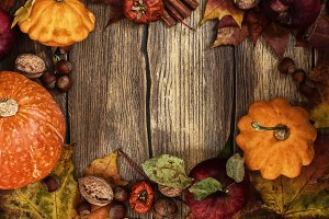 Fall harvest frame