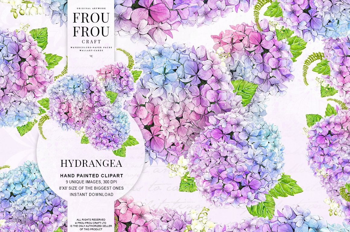 Watercolor Hydrangea Flowers Clipart Illustrations Creative Market