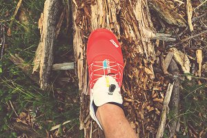 Running Shoes in the Forest