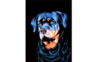 dog original oil painting on velvet