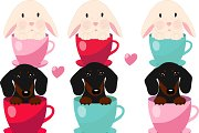 Dachshund and rabbit in the Cup