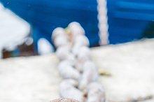 Ship anchor chain moored