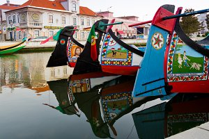 Traditional moliceiro boats