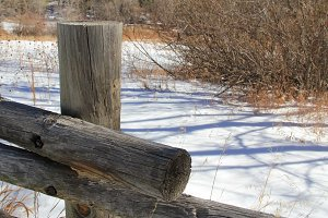 Snowy Field and Wood Fence