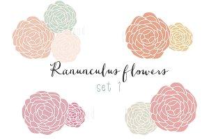Ranunculus clip art set 1