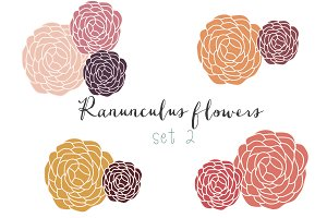 Ranunculus hand drawn clip art set 2