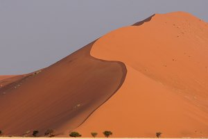 Dunes in the Namib desert