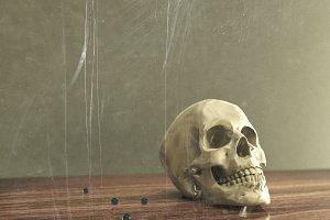 skull lies