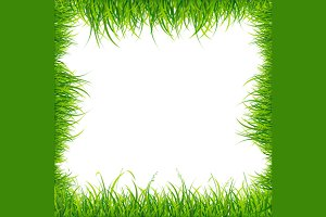 Square Green Grass Frame.