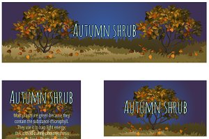 Series cards with autumn tree