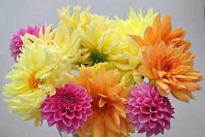 bouquet dahlias last summer