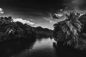 Dominica river.