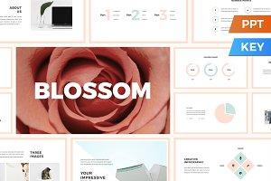 Blossom Presentation Template