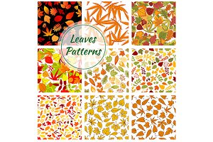 Autumn plants and trees patterns