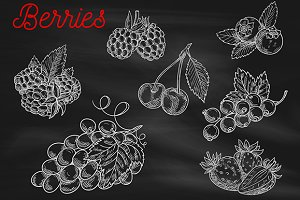 Berries chalk sketch icons