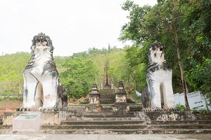 Lion statues at the couple